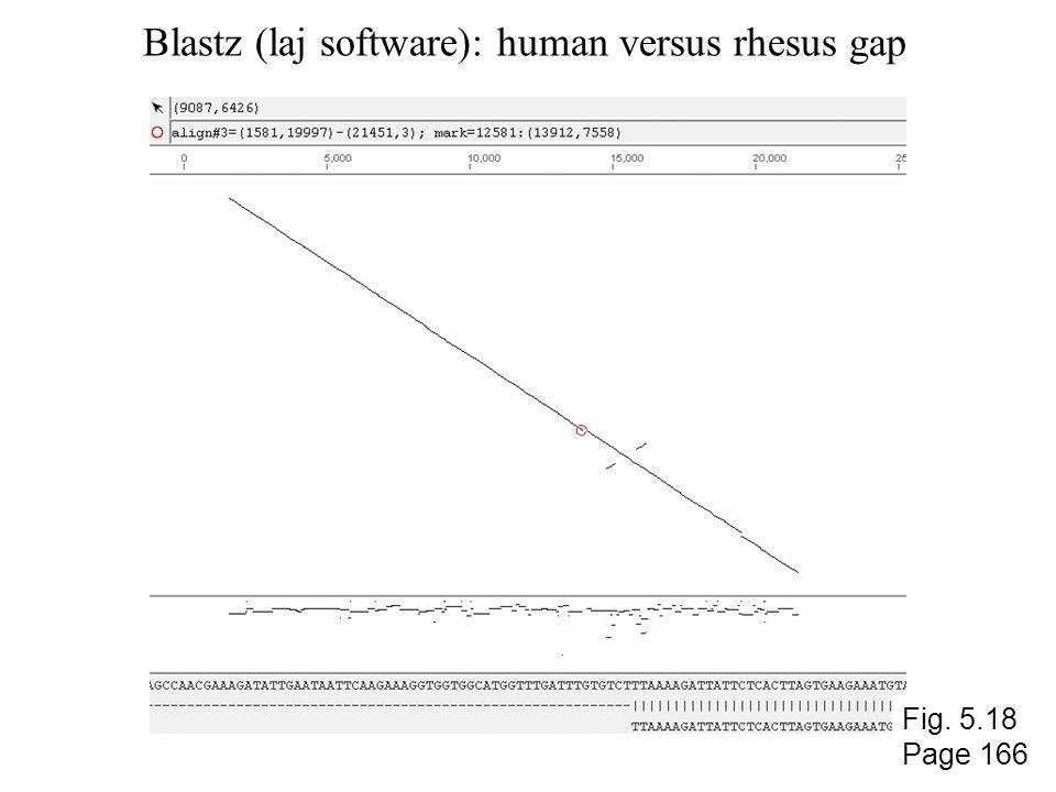 Blastz (laj software): human versus rhesus gap Fig. 5.18 Page 166