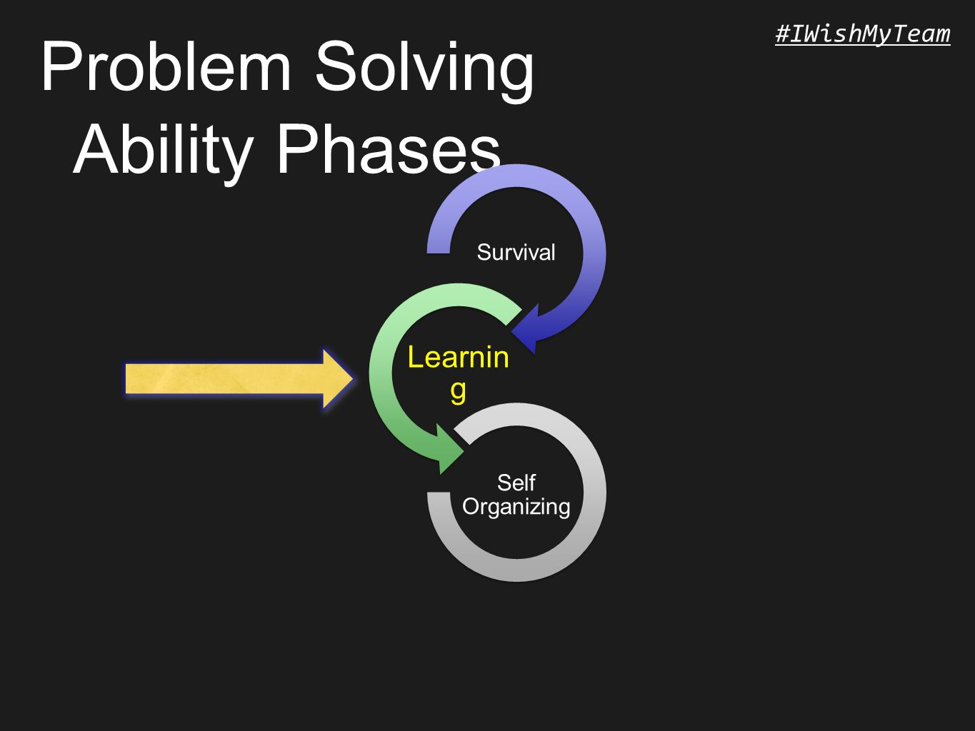 #IWishMyTeam Problem Solving Ability Phases Survival Learnin g Self Organizing