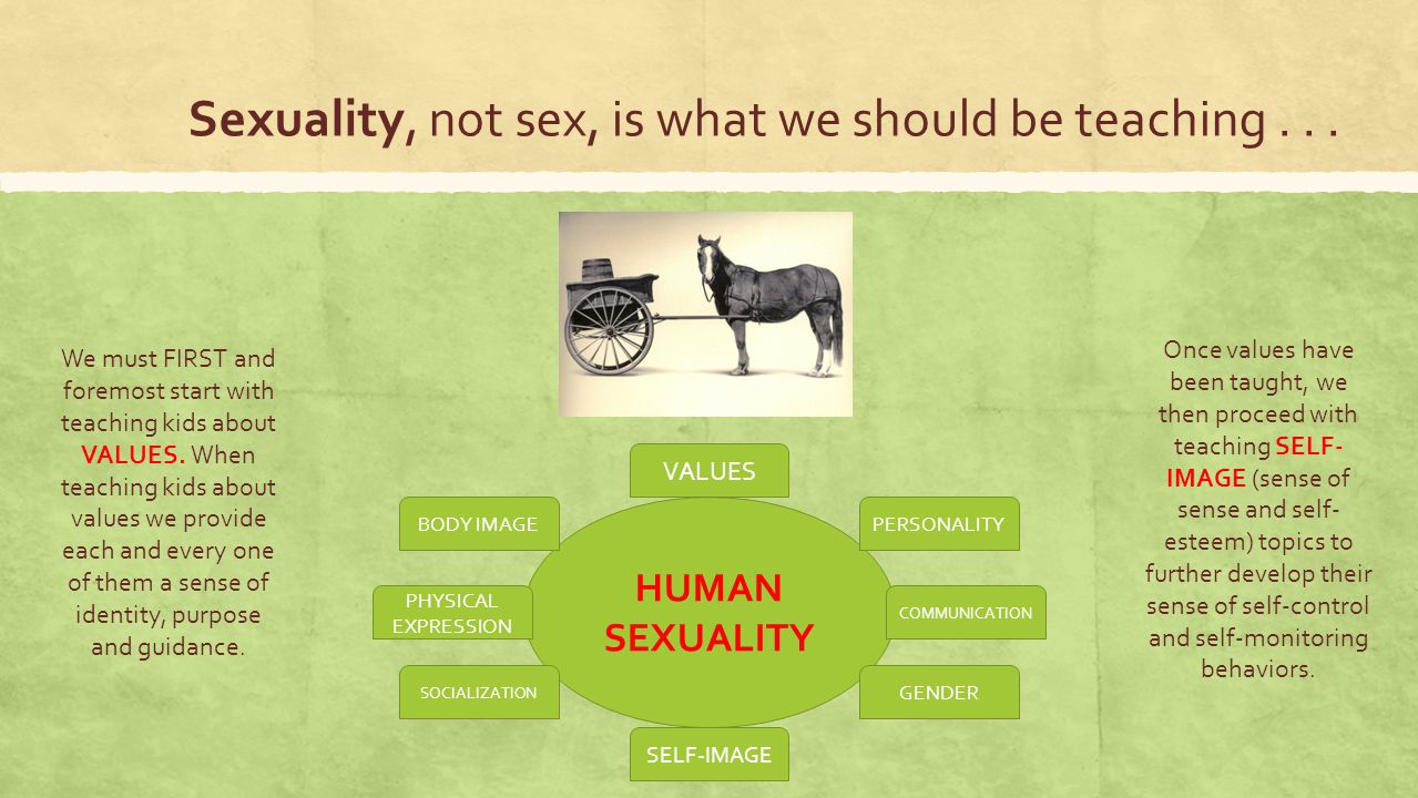 Sexuality, not sex, is what we should be teaching... HUMAN SEXUALITY PERSONALITY COMMUNICATION VALUES SELF-IMAGE PHYSICAL EXPRESSION BODY IMAGE SOCIAL