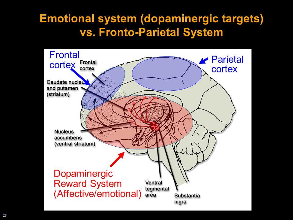 28 Emotional system (dopaminergic targets) vs.