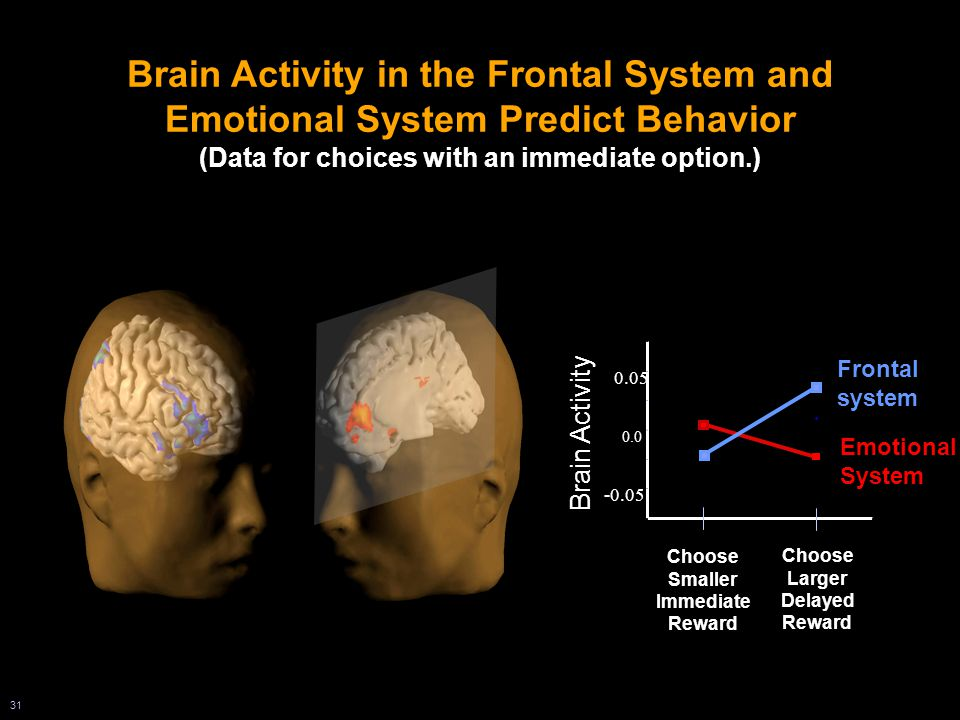 31 0.0 -0.05 0.05 Choose Smaller Immediate Reward Choose Larger Delayed Reward Emotional System Frontal system Brain Activity Brain Activity in the Frontal System and Emotional System Predict Behavior (Data for choices with an immediate option.)
