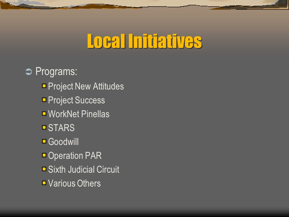 Local Initiatives  Programs: Project New Attitudes Project Success WorkNet Pinellas STARS Goodwill Operation PAR Sixth Judicial Circuit Various Other