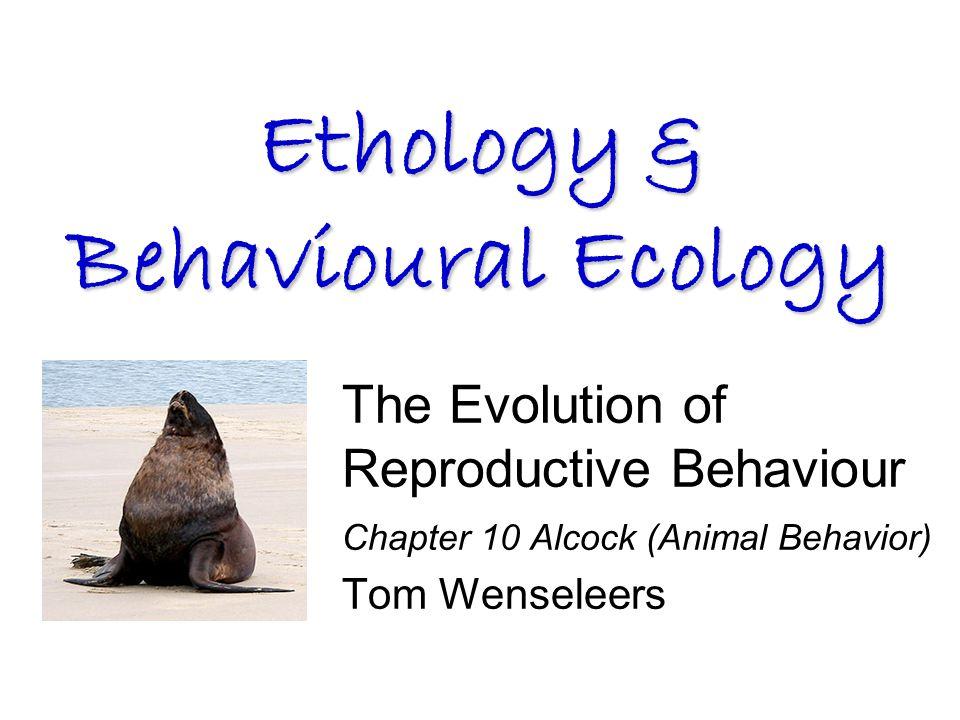 The Evolution of Reproductive Behaviour Chapter 10 Alcock (Animal Behavior) Tom Wenseleers Ethology & Behavioural Ecology