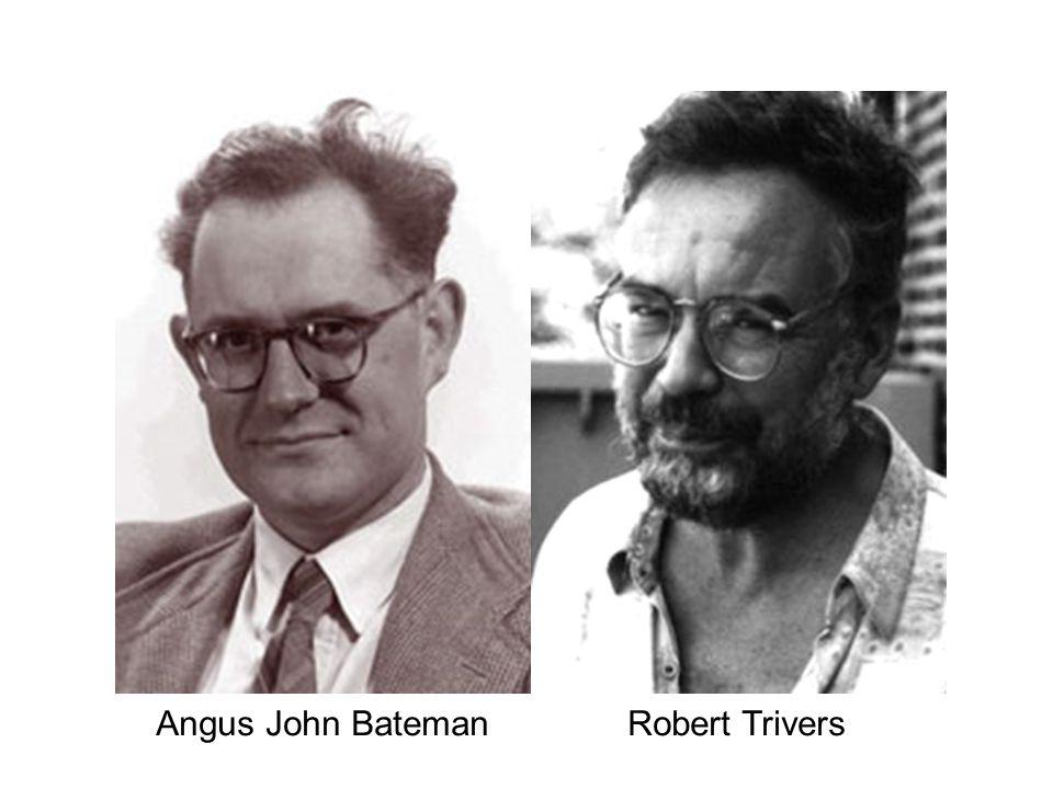 Angus John Bateman Robert Trivers