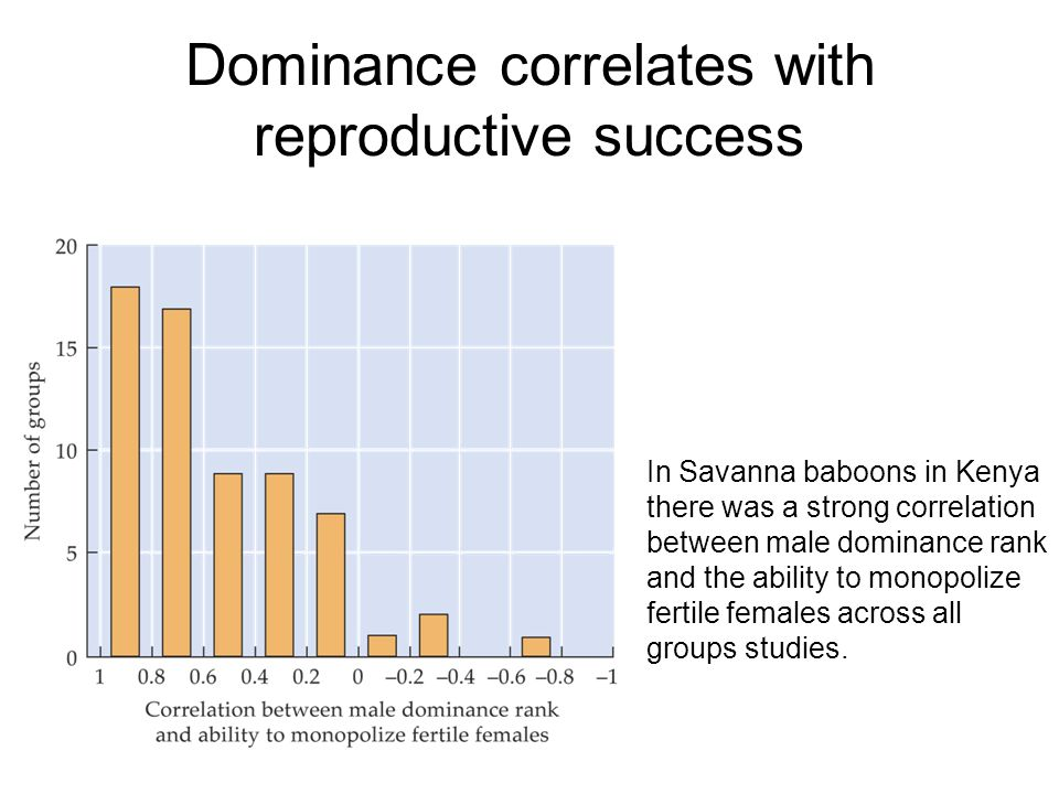 Dominance correlates with reproductive success In Savanna baboons in Kenya there was a strong correlation between male dominance rank and the ability