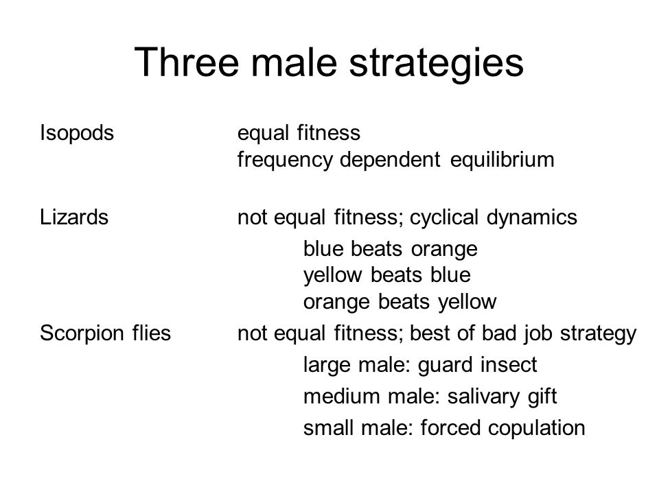 Three male strategies Isopodsequal fitness frequency dependent equilibrium Lizardsnot equal fitness; cyclical dynamics blue beats orange yellow beats