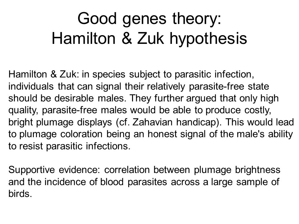 Good genes theory: Hamilton & Zuk hypothesis Hamilton & Zuk: in species subject to parasitic infection, individuals that can signal their relatively p