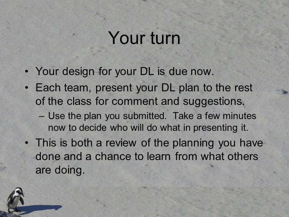 Your turn Your design for your DL is due now.
