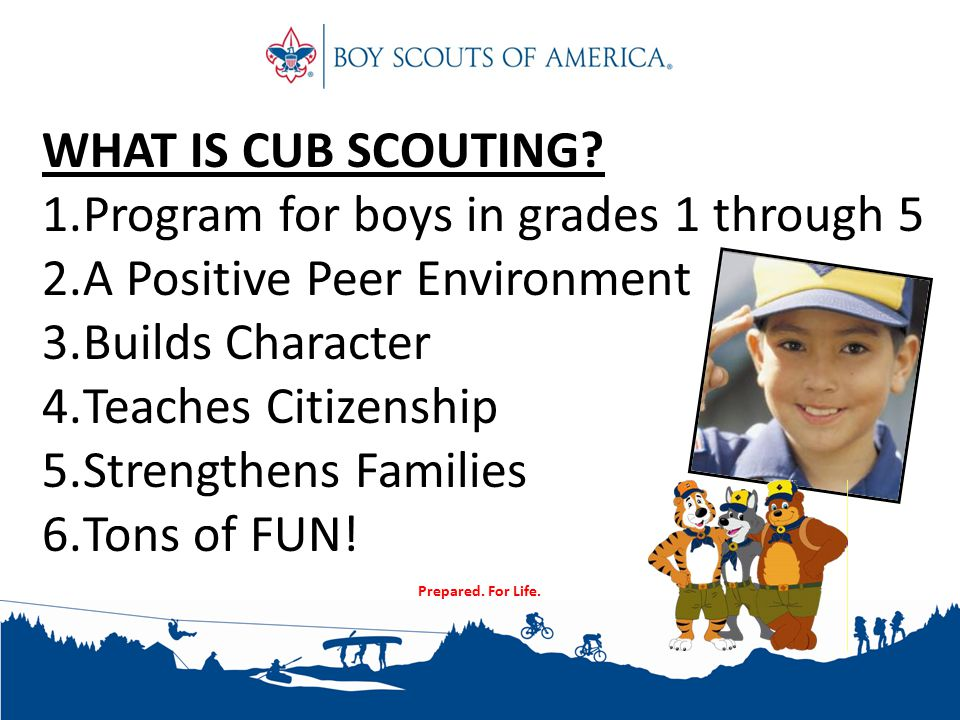 WHAT IS CUB SCOUTING.
