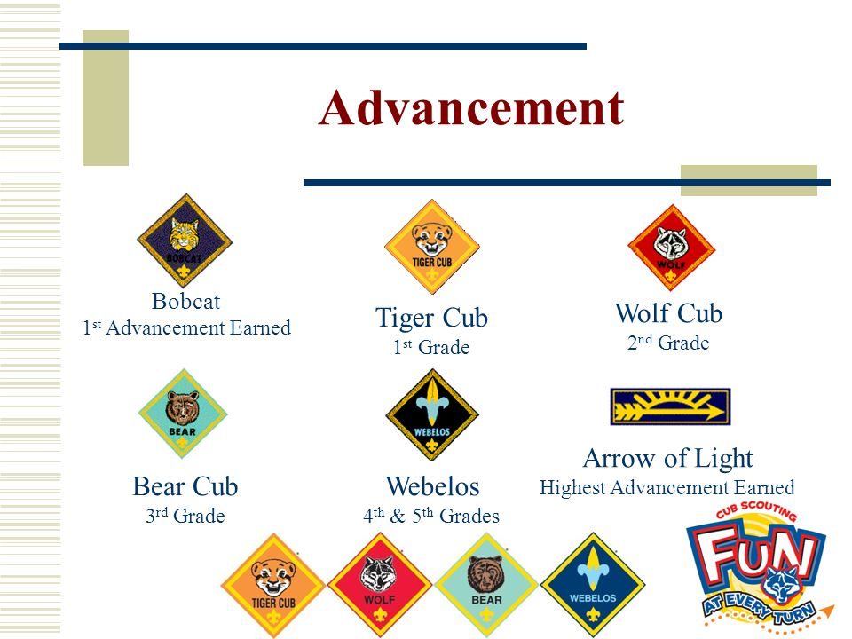 Advancement Bobcat 1 st Advancement Earned Tiger Cub 1 st Grade Bear Cub 3 rd Grade Webelos 4 th & 5 th Grades Arrow of Light Highest Advancement Earn