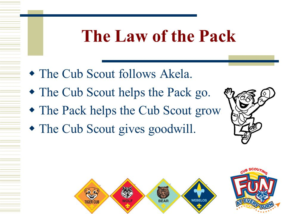 The Law of the Pack  The Cub Scout follows Akela.  The Cub Scout helps the Pack go.  The Pack helps the Cub Scout grow.  The Cub Scout gives goodw