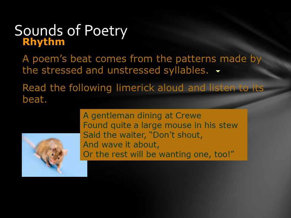 Sounds of Poetry Read the following limerick aloud and listen to its beat.