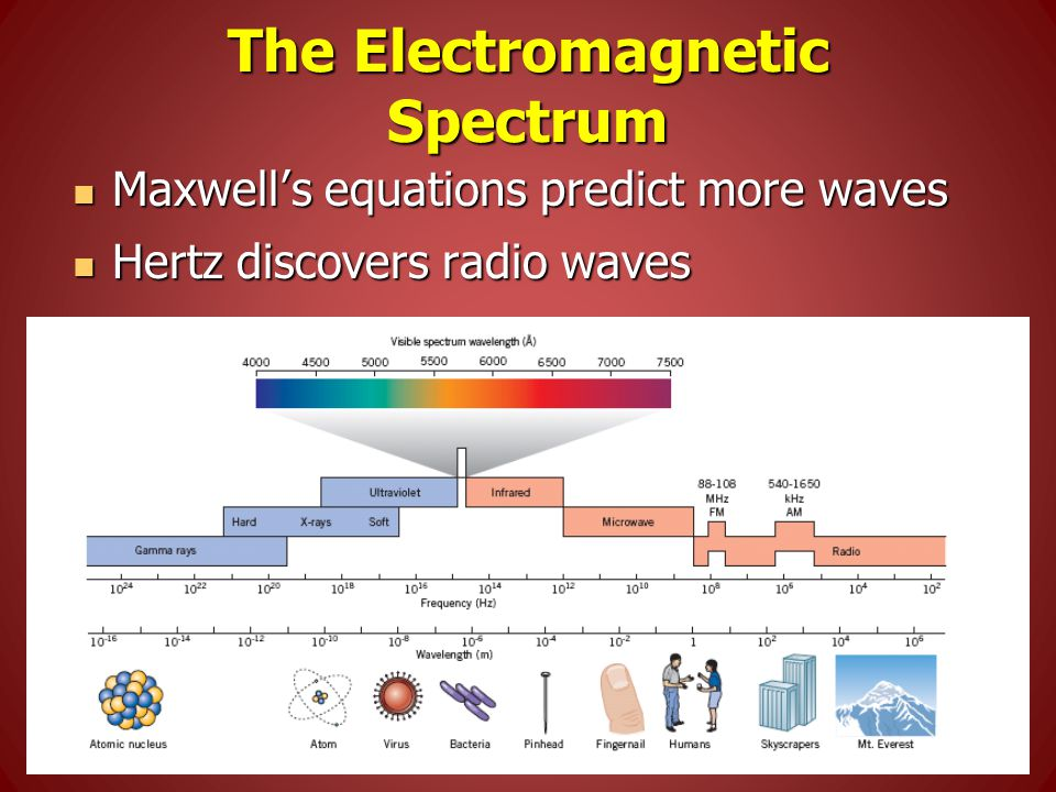 The Electromagnetic Spectrum Maxwell's equations predict more waves Maxwell's equations predict more waves Hertz discovers radio waves Hertz discovers radio waves