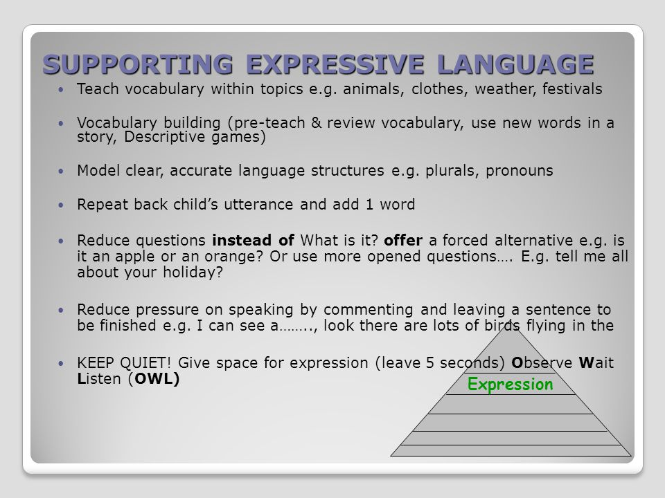 SUPPORTING EXPRESSIVE LANGUAGE Expression Teach vocabulary within topics e.g.
