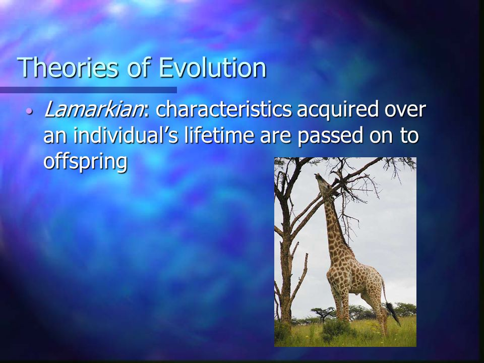I. Theories of Evolution Enormous influence on psychology Enormous influence on psychology eg.