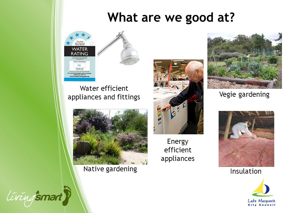 Water efficient appliances and fittings Insulation Native gardening Vegie gardening Energy efficient appliances What are we good at