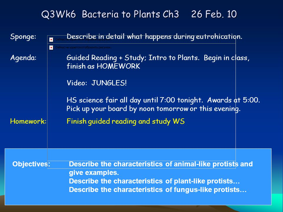 Q3Wk6 Bacteria to Plants Ch3 26 Feb.