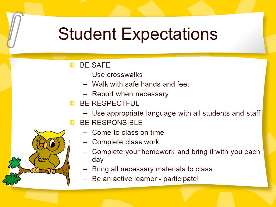 Student Expectations BE SAFE –Use crosswalks –Walk with safe hands and feet –Report when necessary BE RESPECTFUL –Use appropriate language with all students and staff BE RESPONSIBLE –Come to class on time –Complete class work –Complete your homework and bring it with you each day –Bring all necessary materials to class –Be an active learner - participate!