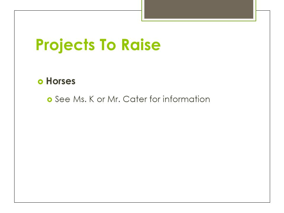 Projects To Raise  Horses  See Ms. K or Mr. Cater for information