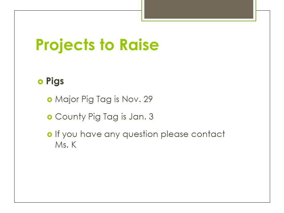 Projects to Raise  Pigs  Major Pig Tag is Nov. 29  County Pig Tag is Jan.