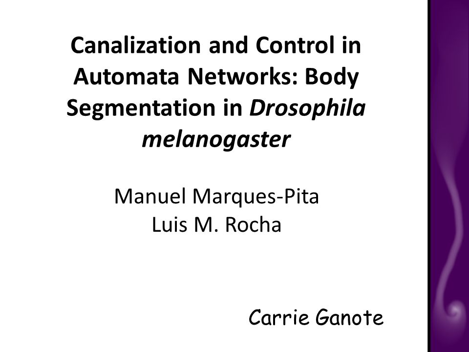 Canalization and Control in Automata Networks: Body Segmentation in Drosophila melanogaster Carrie Ganote Manuel Marques-Pita Luis M.