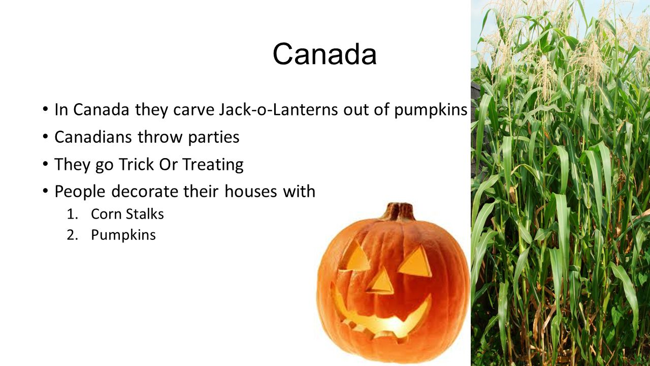 Canada In Canada they carve Jack-o-Lanterns out of pumpkins Canadians throw parties They go Trick Or Treating People decorate their houses with 1.Corn