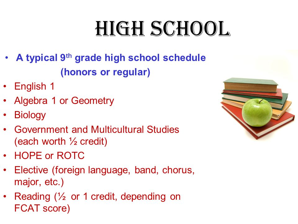 High School A typical 9 th grade high school schedule (honors or regular) English 1 Algebra 1 or Geometry Biology Government and Multicultural Studies
