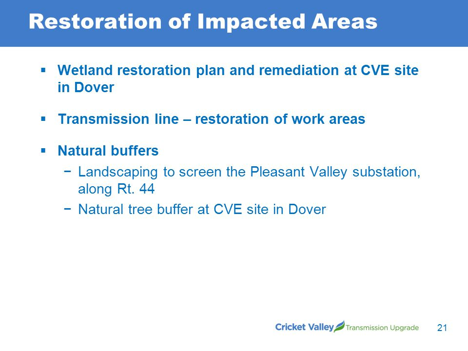 Restoration of Impacted Areas 21  Wetland restoration plan and remediation at CVE site in Dover  Transmission line – restoration of work areas  Natural buffers −Landscaping to screen the Pleasant Valley substation, along Rt.
