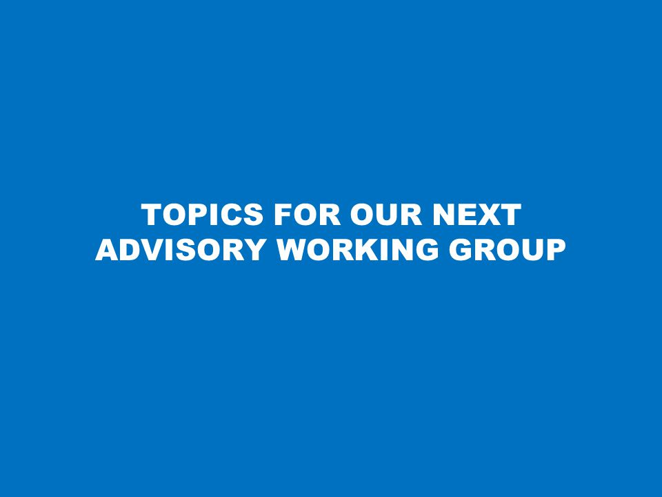 TOPICS FOR OUR NEXT ADVISORY WORKING GROUP 29