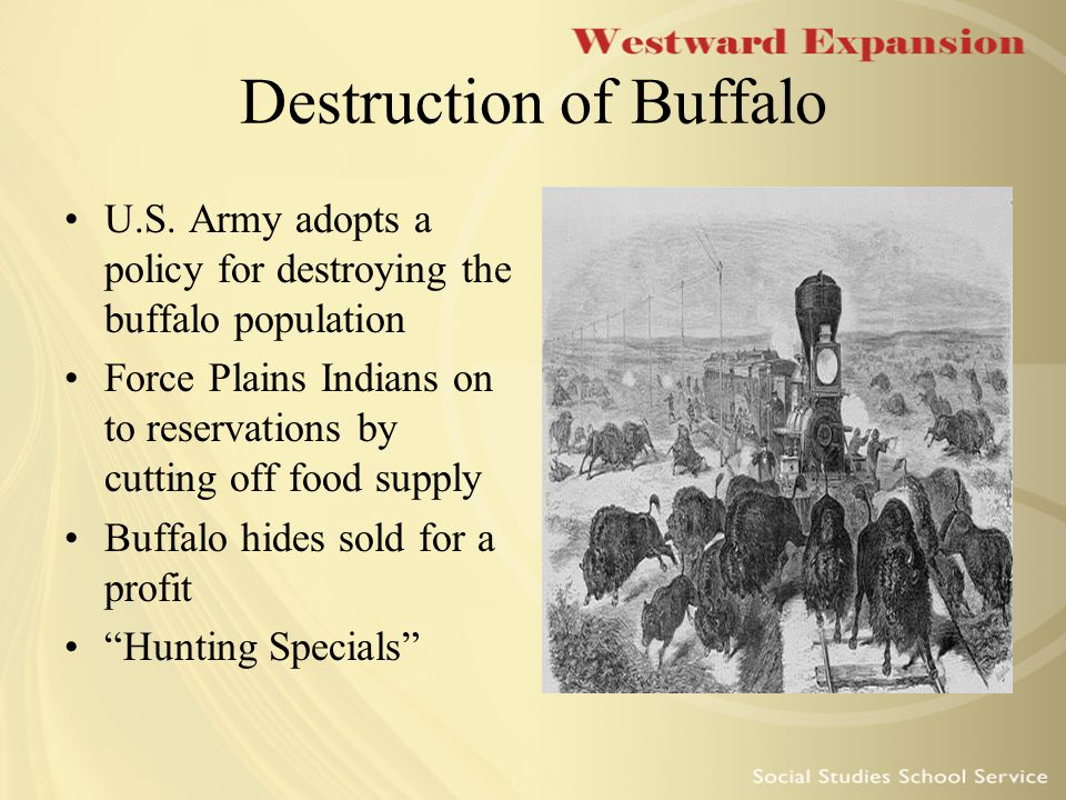 Culture of the Plains Indians Thrived thanks to the abundance of wild buffalo Traveled as they followed the migration of buffalo They disagreed with white settlers about the purpose of land