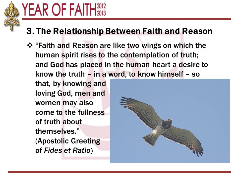 """3. The Relationship Between Faith and Reason  """"Faith and Reason are like two wings on which the human spirit rises to the contemplation of truth; and"""
