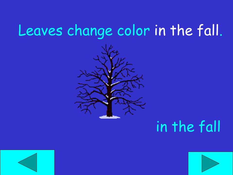 Leaves change color in the fall. in the fall
