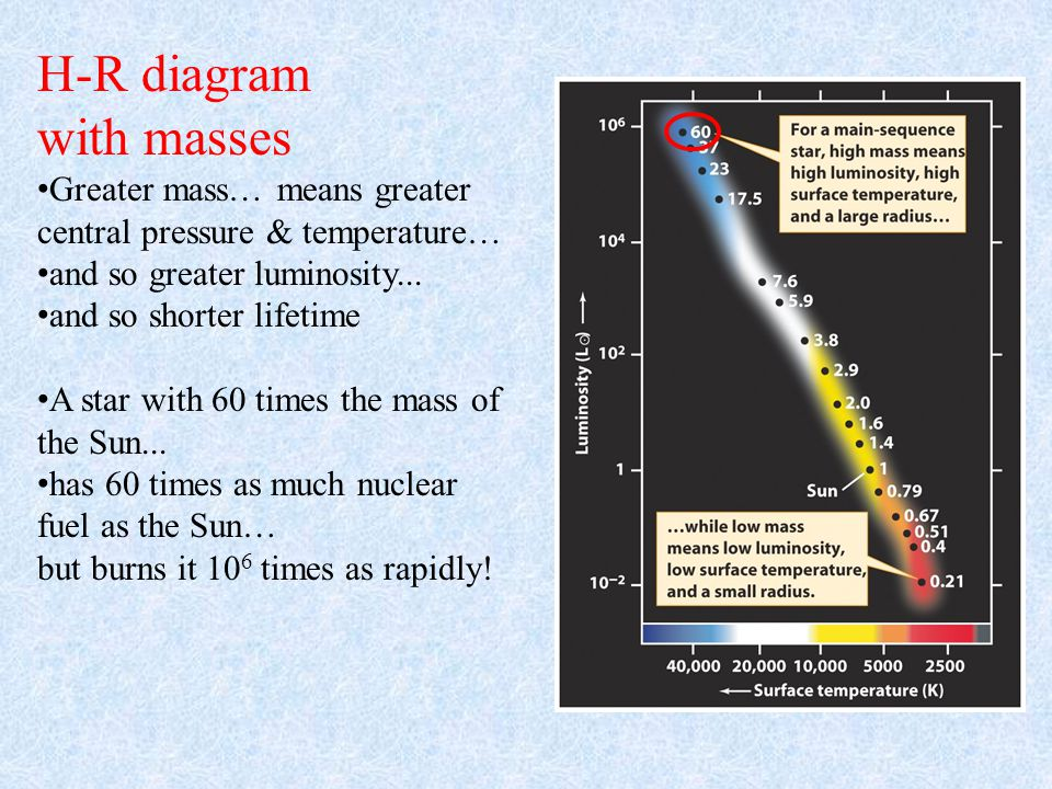 H-R diagram with masses Greater mass… means greater central pressure & temperature… and so greater luminosity...