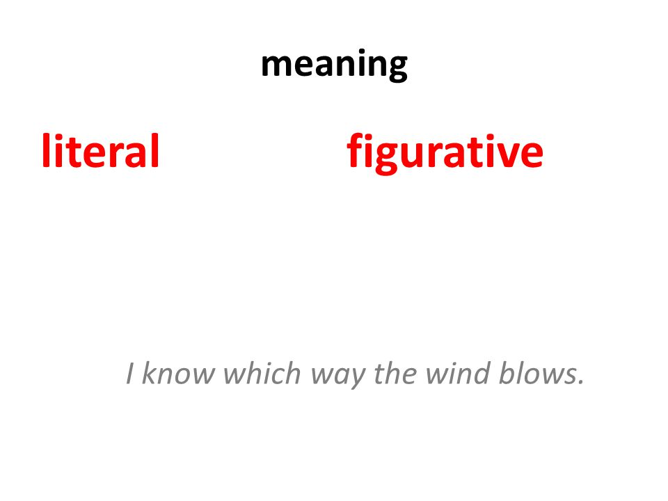 meaning literalfigurative I know which way the wind blows.