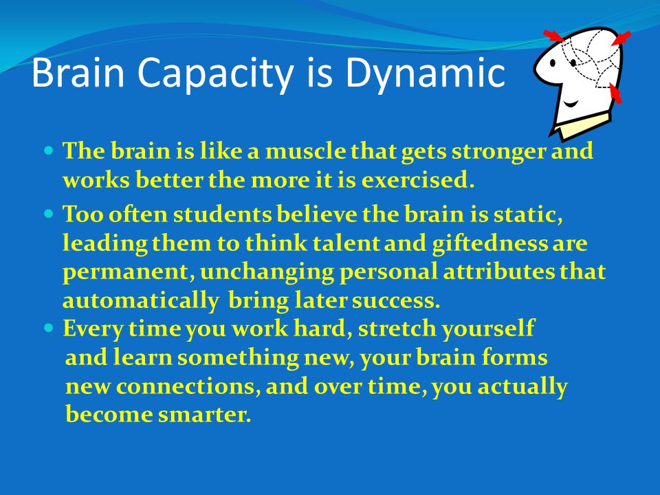 Brain Capacity is Dynamic The brain is like a muscle that gets stronger and works better the more it is exercised.