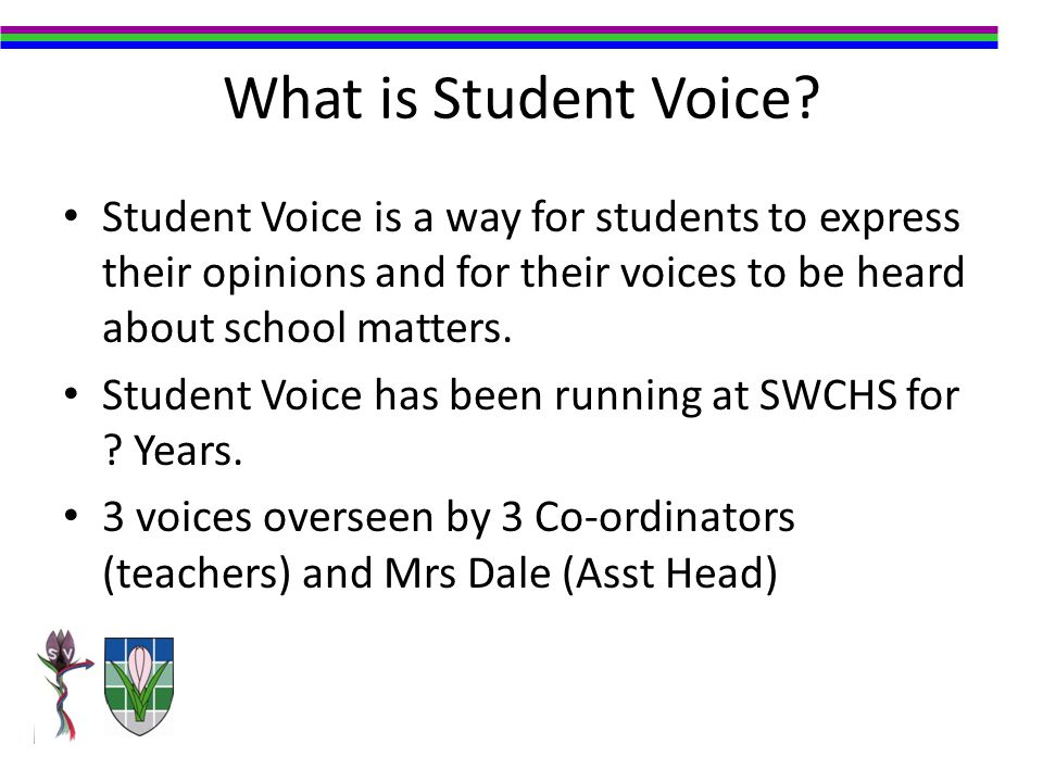What is Student Voice.