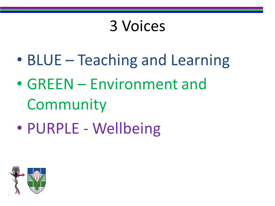 3 Voices BLUE – Teaching and Learning GREEN – Environment and Community PURPLE - Wellbeing