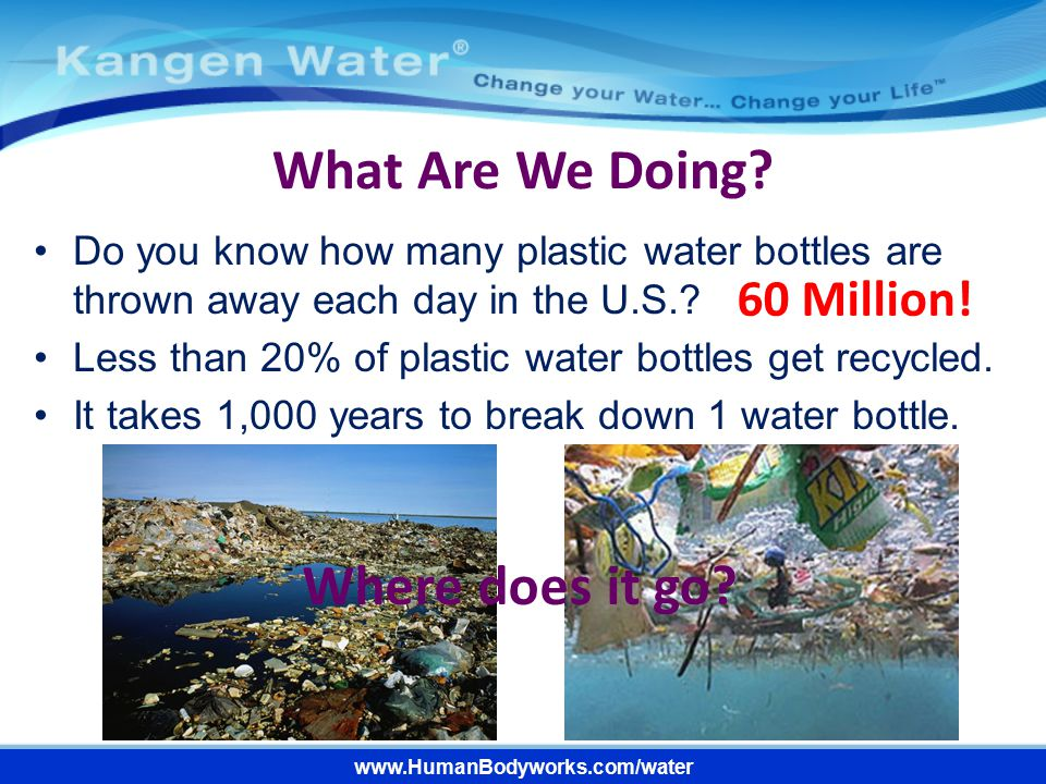 www.HumanBodyworks.com/water What Are We Doing? Do you know how many plastic water bottles are thrown away each day in the U.S.? Less than 20% of plas