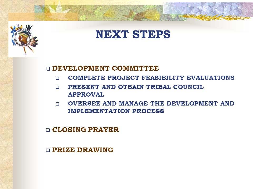 NEXT STEPS  DEVELOPMENT COMMITTEE  COMPLETE PROJECT FEASIBILITY EVALUATIONS  PRESENT AND OTBAIN TRIBAL COUNCIL APPROVAL  OVERSEE AND MANAGE THE DE