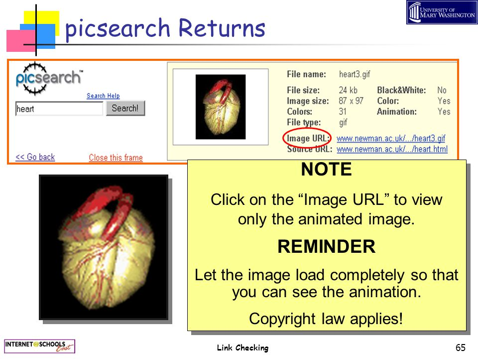 "Link Checking 65 picsearch Returns NOTE Click on the ""Image URL"" to view only the animated image. REMINDER Let the image load completely so that you c"