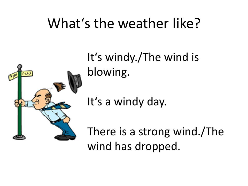 What's the weather like. It's windy./The wind is blowing.