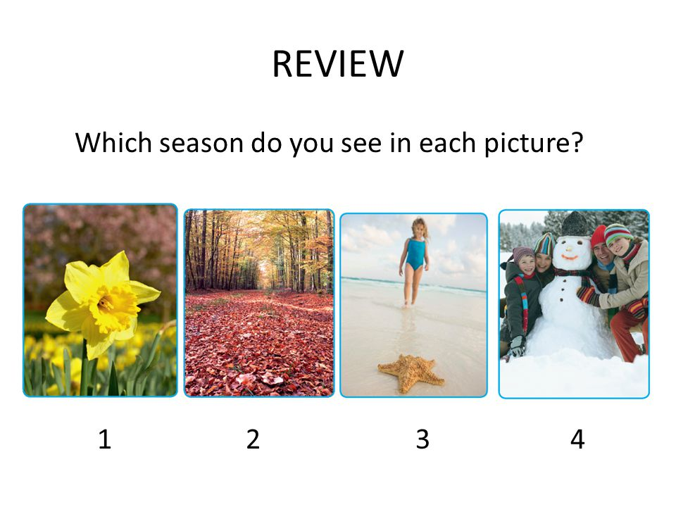 REVIEW Which season do you see in each picture 1 2 34
