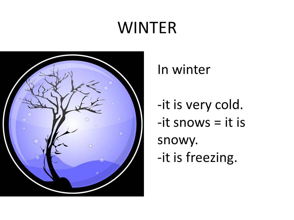 WINTER In winter -it is very cold. -it snows = it is snowy. -it is freezing.