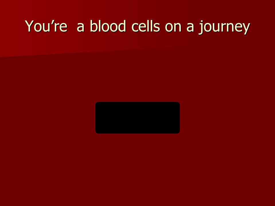 You're a blood cells on a journey