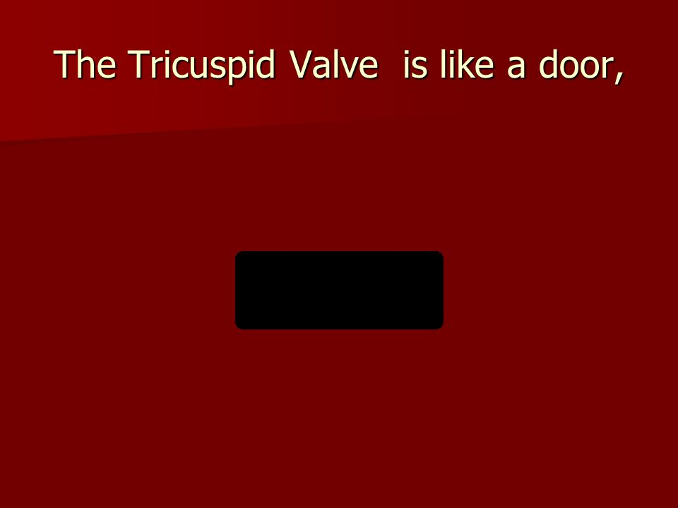 The Tricuspid Valve is like a door,
