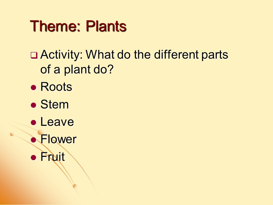  Activity: What do the different parts of a plant do? Roots Roots Stem Stem Leave Leave Flower Flower Fruit Fruit Theme: Plants