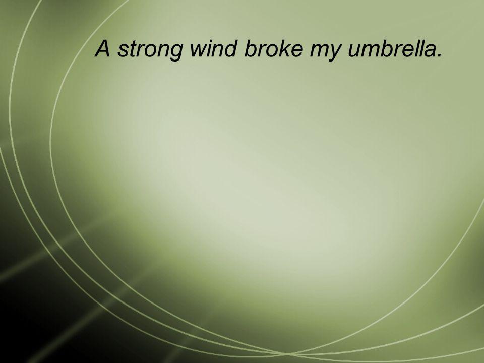 A strong wind broke my umbrella.