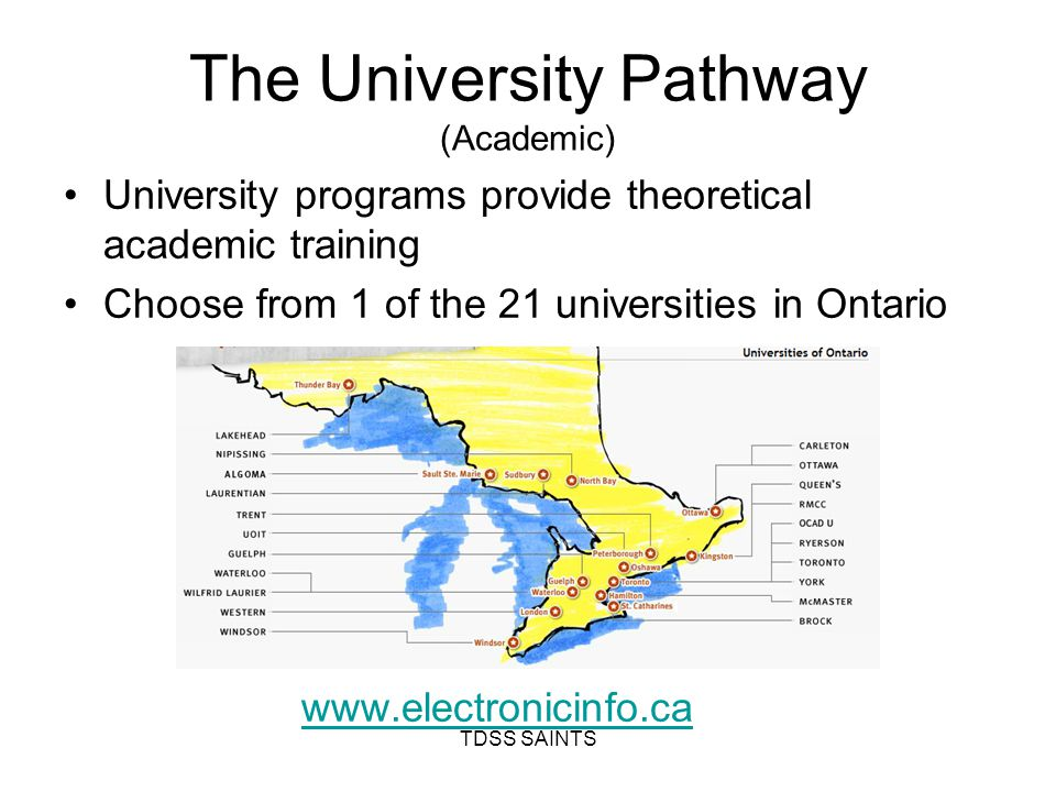 The University Pathway (Academic) University programs provide theoretical academic training Choose from 1 of the 21 universities in Ontario www.electronicinfo.ca TDSS SAINTS