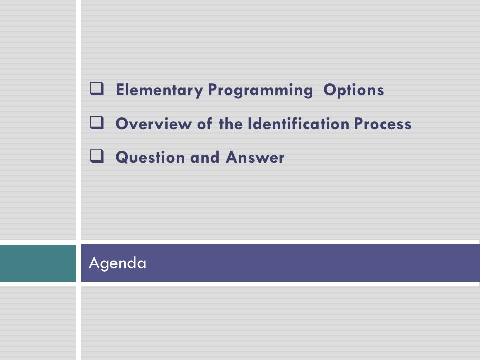 Agenda  Elementary Programming Options  Overview of the Identification Process  Question and Answer