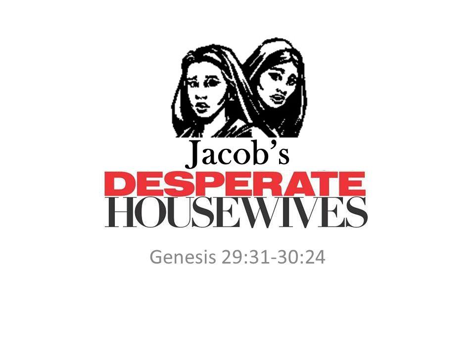 Jacob's Genesis 29:31-30:24